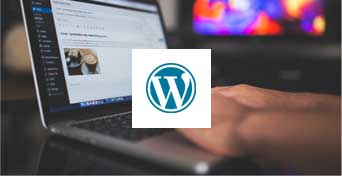 wordpress and seo services by japjidesigner